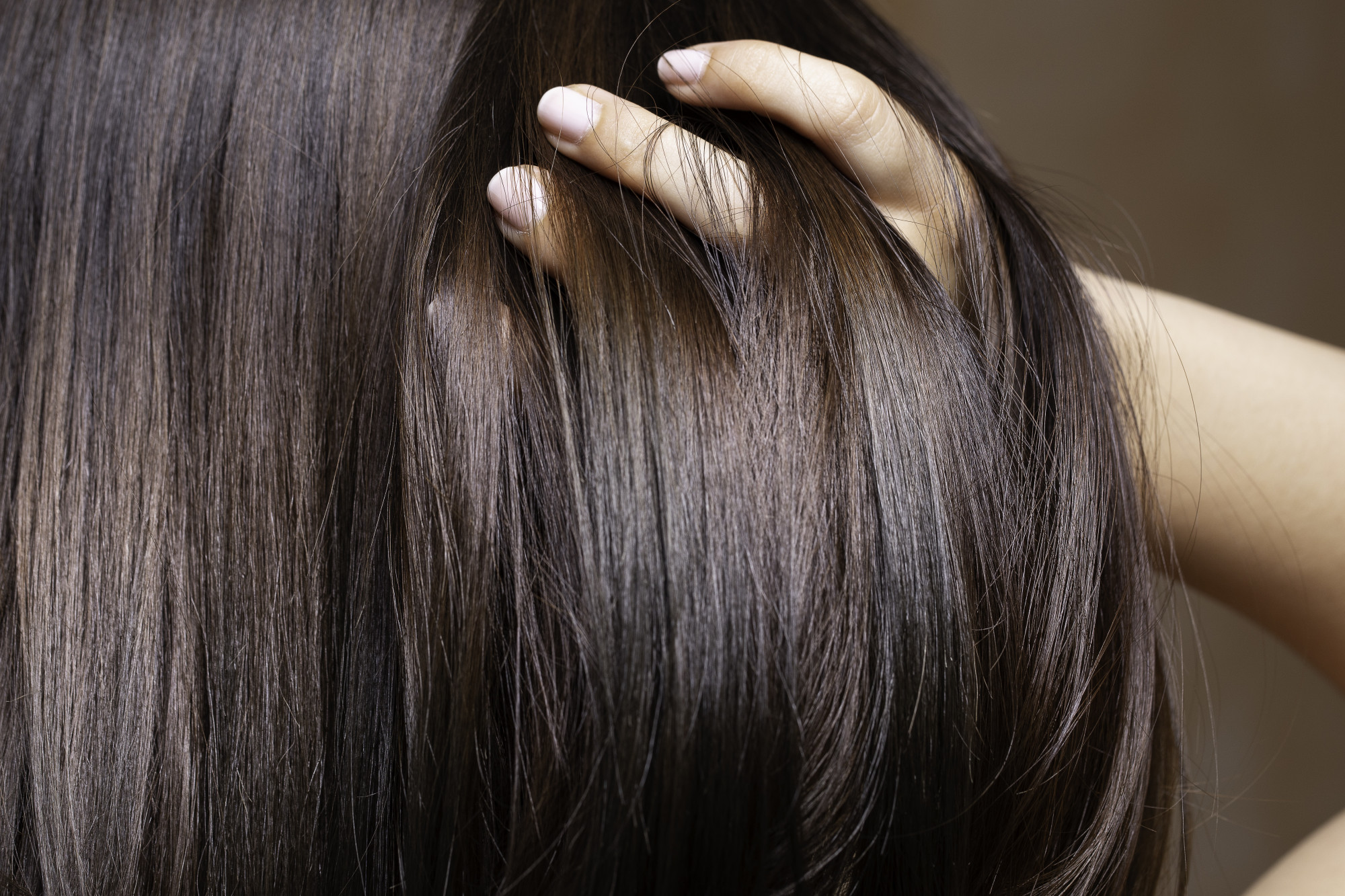 How to Condition Hair the Right Way: All the Steps You Should Take